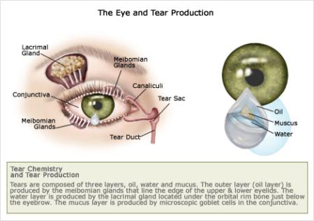 Dry Eye Treatment Rockville, MD